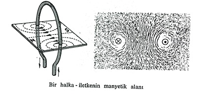 bir halka iletkenin manyetik alanı