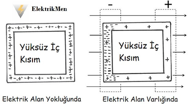 faraday kafesi